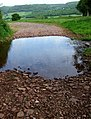 Stream pool at Beer Barn - geograph.org.uk - 177213.jpg