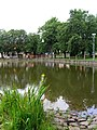 Struhařov, common pond.jpg