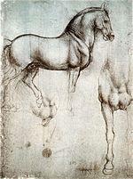 Rysunek w twórczości leonarda da vinci