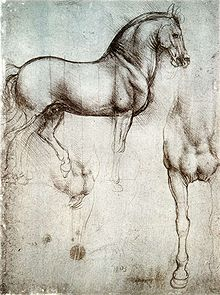 A page with two drawings of a war-horse, one from the side, and the other showing the chest and right leg