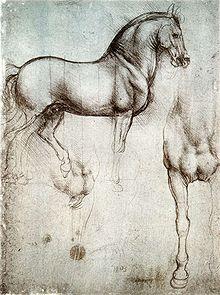 Une page avec deux dessins d'un cheval de guerre, un de côté, et l'autre montrant la jambe droite et la poitrine