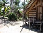 Suriname rainforest villages.jpg