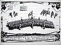 Svensk Kavalleriformering 1707.JPG
