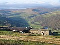 Swaledale from Whitaside - geograph.org.uk - 1617036.jpg