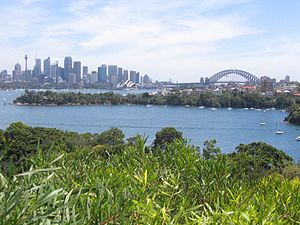 Taronga Zoo ferry services - Taronga Zoo is one of Sydney's premier harbourside attractions.