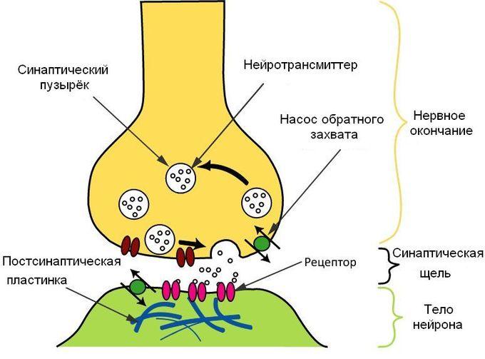 Схема процесса передачи