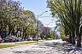 Tafí Viejo Avenida Alem Tarcos 4.jpg