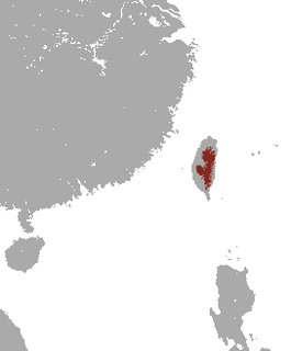 Taiwanese brown-toothed shrew species of mammal