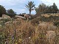 Tal-Qadi Temple, Naxxar 15.jpg
