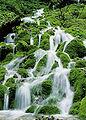 Talheimer Wasserfall.jpg