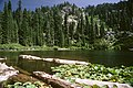 Tanner Lake in the Red Buttes Wilderness, Rogue River Siskiyou National Forest (23620852290).jpg