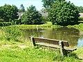 Teich Reinbek - panoramio.jpg