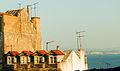 Tejados lusitanos (16799891448).jpg