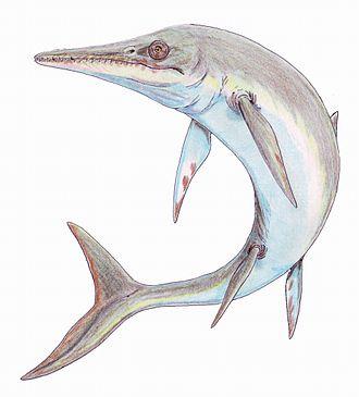 Hettangian - Temnodontosaurus