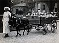 The 18-seater pram, Park Royal Hospital, London, 1925 Wellcome V0031311.jpg