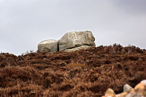 The Grey Stone - geograph.org.uk - 1761871
