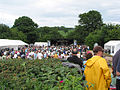The Linton Festival - geograph.org.uk - 476312.jpg