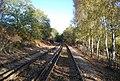 The Medway Valley Line near Yalding - geograph.org.uk - 1568416.jpg