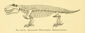 The Osteology of the Reptiles-246 kjhg jh.png