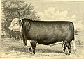 The breeds of live stock, and the principles of heredity (1887) (14594566820).jpg