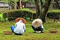 The gardeners - Kenroku-en, 兼六園, Kanazawa, Ishikawa, Japan, (43086848051).jpg