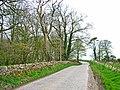 The road to Balgreggan - geograph.org.uk - 318810.jpg