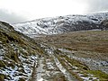 The track towards Melynllyn Reservoir - geograph.org.uk - 717938.jpg