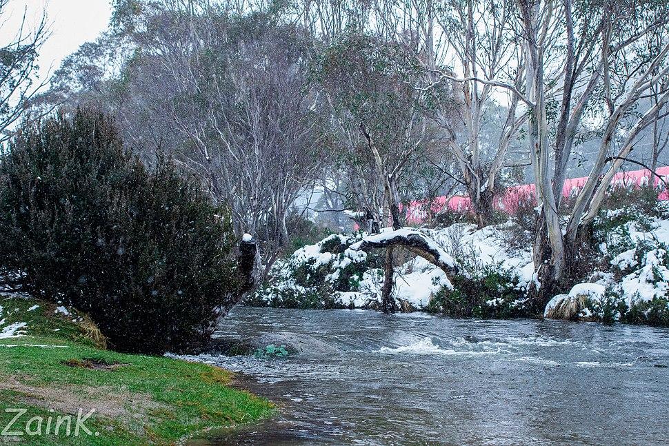 Thredbo River Winters Snow