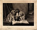Three puppies sitting on an open book on a table. Etching by Wellcome V0021891.jpg