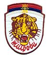 Tigers unofficial logo.jpg