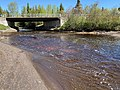 Tobacco River Keweenaw County.jpg