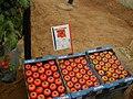 Tomate (2).JPG
