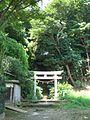 Torii (鳥居) at Okamoto Hachiman Shrine (岡本八幡神社) - panoramio.jpg