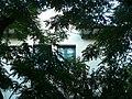 Torre Blanca P1490136.jpg