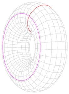220px-Torus_cycles