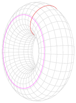 Simply connected space - A torus is not simply connected. Neither of the colored loops can be contracted to a point without leaving the surface.