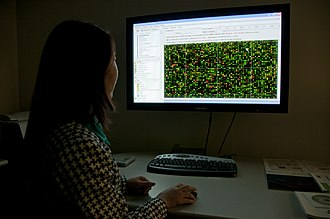 DNA microarray - National Center for Toxicological Research scientist reviews microarray data