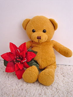 ToyBearwithRedFlower