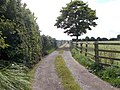 Track around Playing Fields - off Hull Road (geograph 4595307).jpg