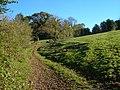 Track near Wastor - geograph.org.uk - 274235.jpg