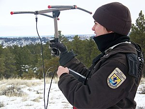 Wildlife officer tracking radio tagged mountain lion Tracking Mountain Lions.jpg