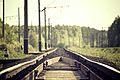 Tracks(byAlexanderShustov).jpg