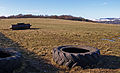 Tractor Tyre - geograph.org.uk - 1736037.jpg