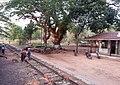 Train from Dawei to Mawlamyine 15.jpg