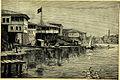 Trebizond shoreline Verney Lovett Cameron (1889).jpg