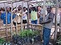 Tree Nursery (5566955125).jpg