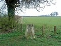 Triangulation pillar, field and footpath - geograph.org.uk - 382288.jpg