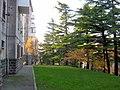 Trieste, Italy - panoramio (14).jpg
