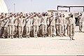 U.S. Marines and Sailors with the 1st Battalion, 9th Marine Regiment salute during a memorial service for Lance Cpl. Caleb L. Erickson at Camp Leatherneck, Helmand province, Afghanistan, March 7, 2014 140307-M-PF875-010.jpg