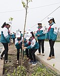 USAID supports tree planting in Nam Dinh Province (33162469332).jpg